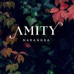 Amity Logo 3